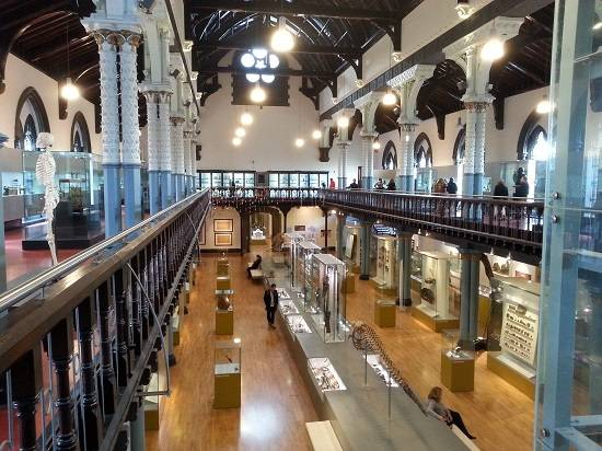 hunterian museum glasgow locomotion.