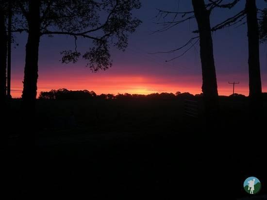 sunrise ace adventures review.