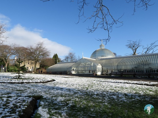 glasgow botanics 5 things you have to do in glasgow.