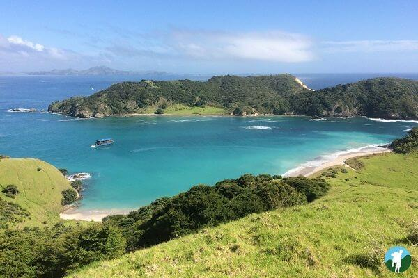 3 weeks in New Zealand highlights bay of islands