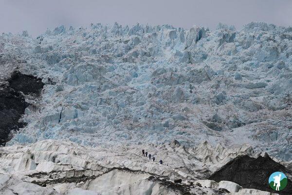 highlights 3 weeks new zealand franz josef glacier