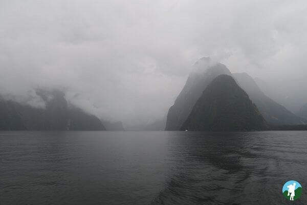 highlights 3 weeks new zealand milford sound
