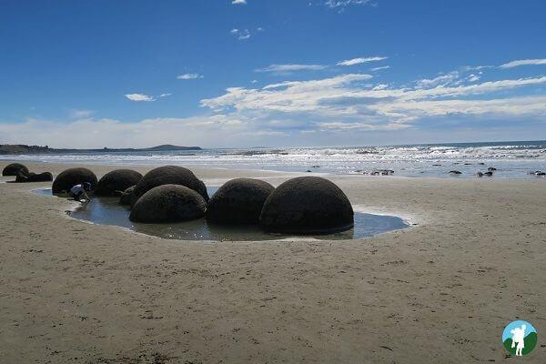 highlights 3 weeks new zealand boulders