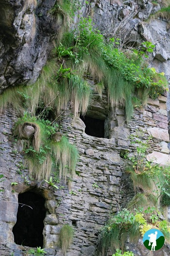 culzean castle caves window