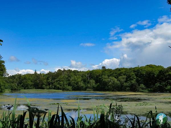 culzean castle caves pond