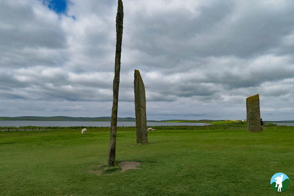 stenness standing stones orkney highlights