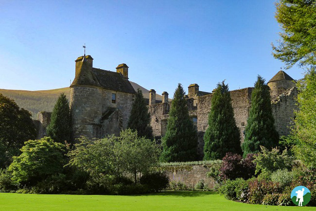 things to do in falkland palace gardens