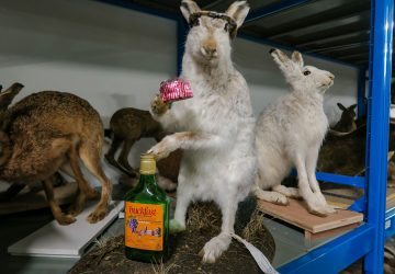 glasgow museums resource centre hare buckfast